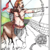 Centaur cards or poster
